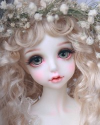 Mona Canvas (Pink, faceup, in stock)