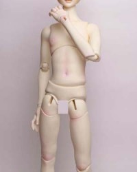 Leaves 60cm Boy Body Ver.II