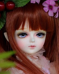 27cm Melody Girl Ver. Head
